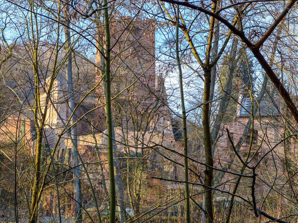 Miltenberg, Schloss-Berg, Burg, Wald