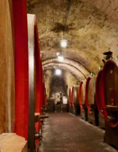 Cantina Ercolani in Montepulciano