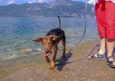 Neros erster Urlaub. Mit einem halben Jahr ging es an den Gardasee.