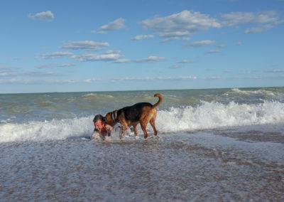 Wellen mag Nero eigentlich gar nicht, aber wenn Papa in Gefahr ist, stürzt er sich in die Fluten!