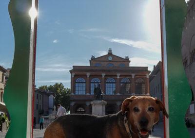 Bilderrahmen auf dem Cavour Sqare in Rimini -  wie gemacht für ein Porträt