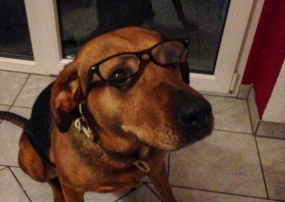 Ich brauche doch keine Brille! Was macht ihr denn mit mir?