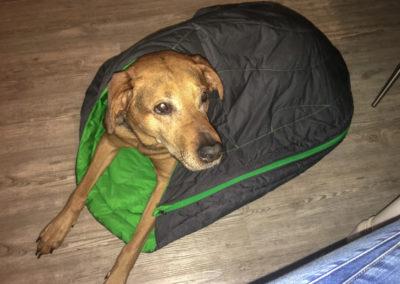 Dieser Schlafsack von Ruffwaer war die beste Anschaffung die wir gemacht haben!