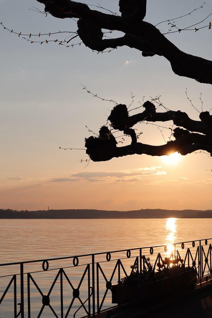 AbenteuerWomo, Meersburg, Bodensee, Baden-Württemberg, Promenade, Uferpromenade, Sonnenuntergang, Abendrot, Platanen