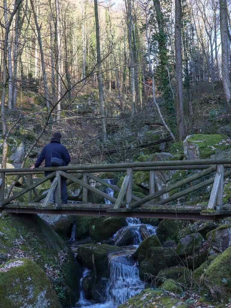 Sasbachwalden, Baden-Württemberg, Ortenau, Wanderung, Schnapsbrunnenweg , AbenteuerWomo, Wald, Natur, Bäume, Wasserfall, Gaishöllwasserfälle