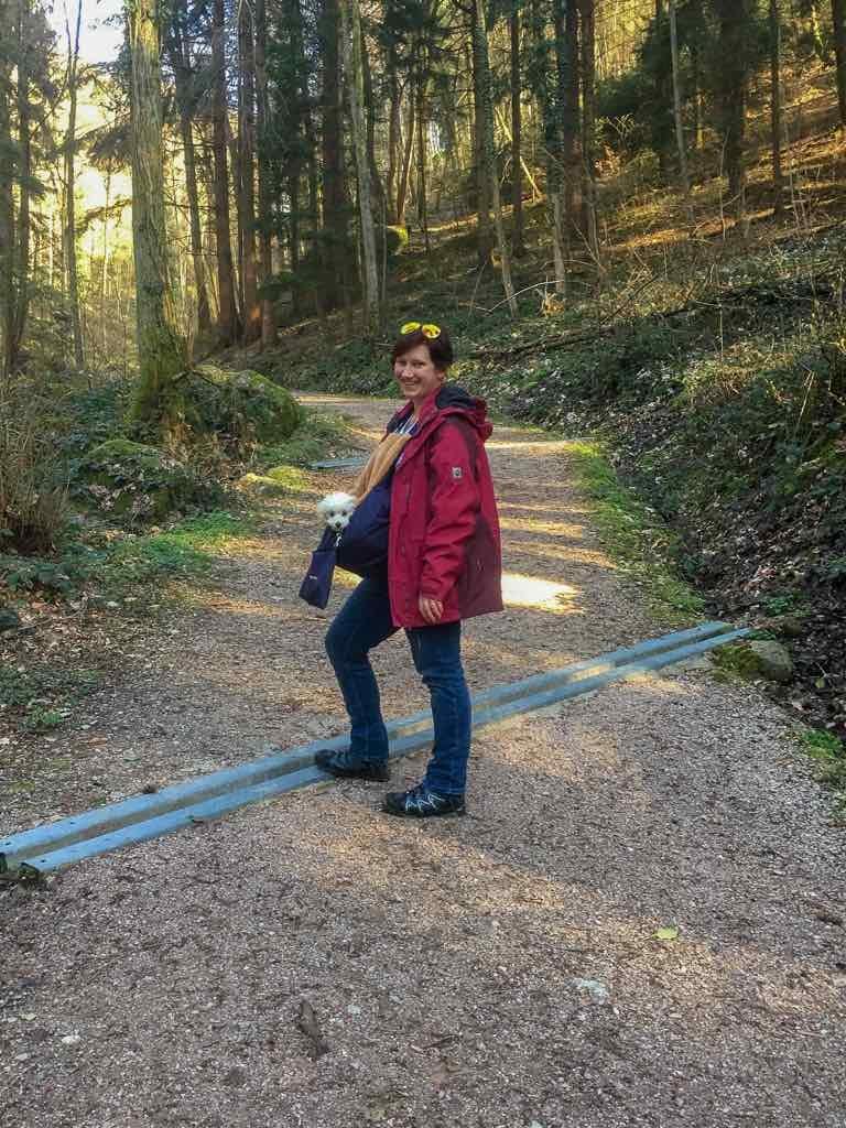 Sasbachwalden, Baden-Württemberg, Ortenau, Wanderung, Schnapsbrunnenweg , AbenteuerWomo, Wald, Natur, Pudel, Toypudel, Bäume